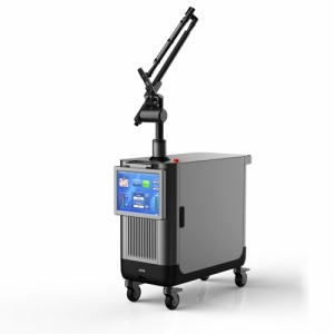 Portable Picosecond Laser Tattoo Removal Equipment for Beaut Manufacturer Price
